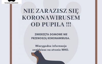 Zwierzęta nie przenoszą koronawirusa !!!