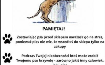 Nie zostawiaj psa przed sklepem