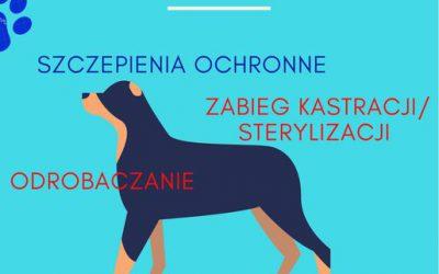 Profilaktyka u psów i kotów