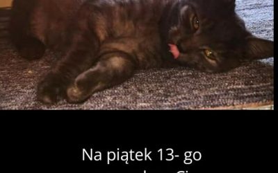 PIĄTEK 13-GO